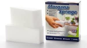 morgana sponge